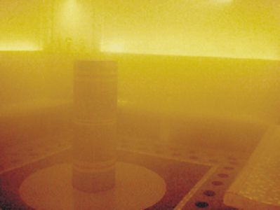 景大渡假莊園The King's Garden Villa 精油能量蒸氣室
